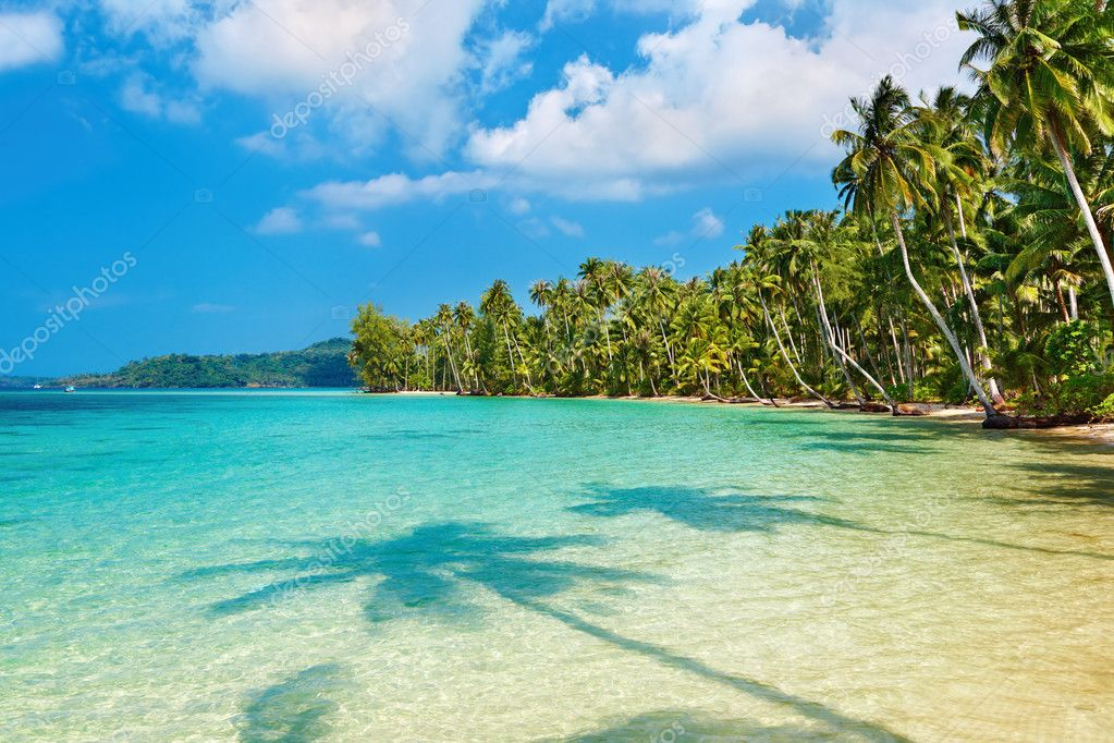 Coconut palms on the beach, Kood island, Thailand — Stock Photo #1592960