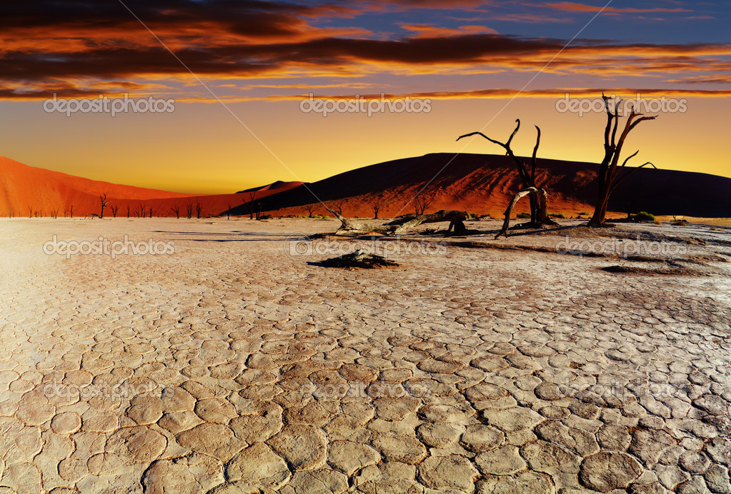 Dead Vlei at sunset, Namib desert, Namibia — Stock Photo #1594543