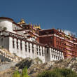 Potala palace in Lhasa - Stock Photo