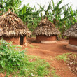 African huts — Stock Photo