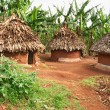 African huts - Foto Stock