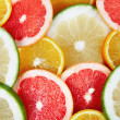 Citrus background — Stock Photo #1611966