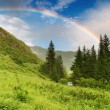 Rainbow over forest - Foto Stock