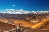 Mount Everest — Fotografia Stock