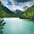 Mountain lake — Stock Photo #1620176