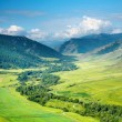 Stock Photo: Green valley
