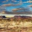 Kalahari Desert, Namibia - Stock Photo