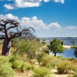 Chobe river in Botswana - Stock Photo