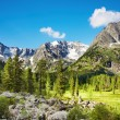 Mountain landscape — Stock Photo #1622045