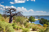 Chobe river in Botswana — Stock Photo