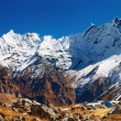Stock Photo: Annapurna base camp, Nepal