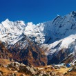Stock Photo: Annapurnbase camp, Nepal