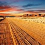 Kalahari Desert, Namibia — Stock Photo