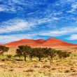 Namib Desert, Sossufley, Namibia - Stock Photo