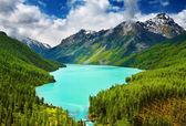 Lago de montanha — Fotografia Stock