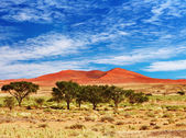 Namib Desert, Sossufley, Namibia — Stock Photo
