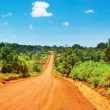 Royalty-Free Stock Photo: African road
