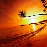 gün batımında tropikal plaj — Stok fotoğraf