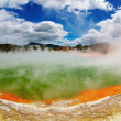 Hot thermal spring, New Zealand - Stock Photo