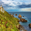 Nugget Point Lighthouse, New Zealand — Foto de Stock
