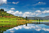 Bunyonyi Lake in Uganda — Stock Photo