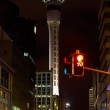Sky Tower, Auckland, New Zealand — Stock Photo
