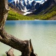 Mountain lake — Stockfoto