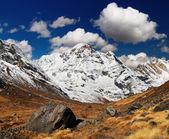 Annapurna sur, himalaya, nepal — Foto de Stock