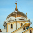 Gold dome - Stock Photo