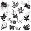 Set of black floral design elements — Stock Vector #1598431