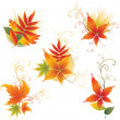 Vector set of colorful autumn leafs — Stock Vector