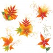 Vector set of colorful autumn leafs - Stock Vector