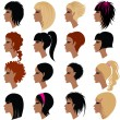 Vector set of hair styling for woman — Stock Vector #1601720