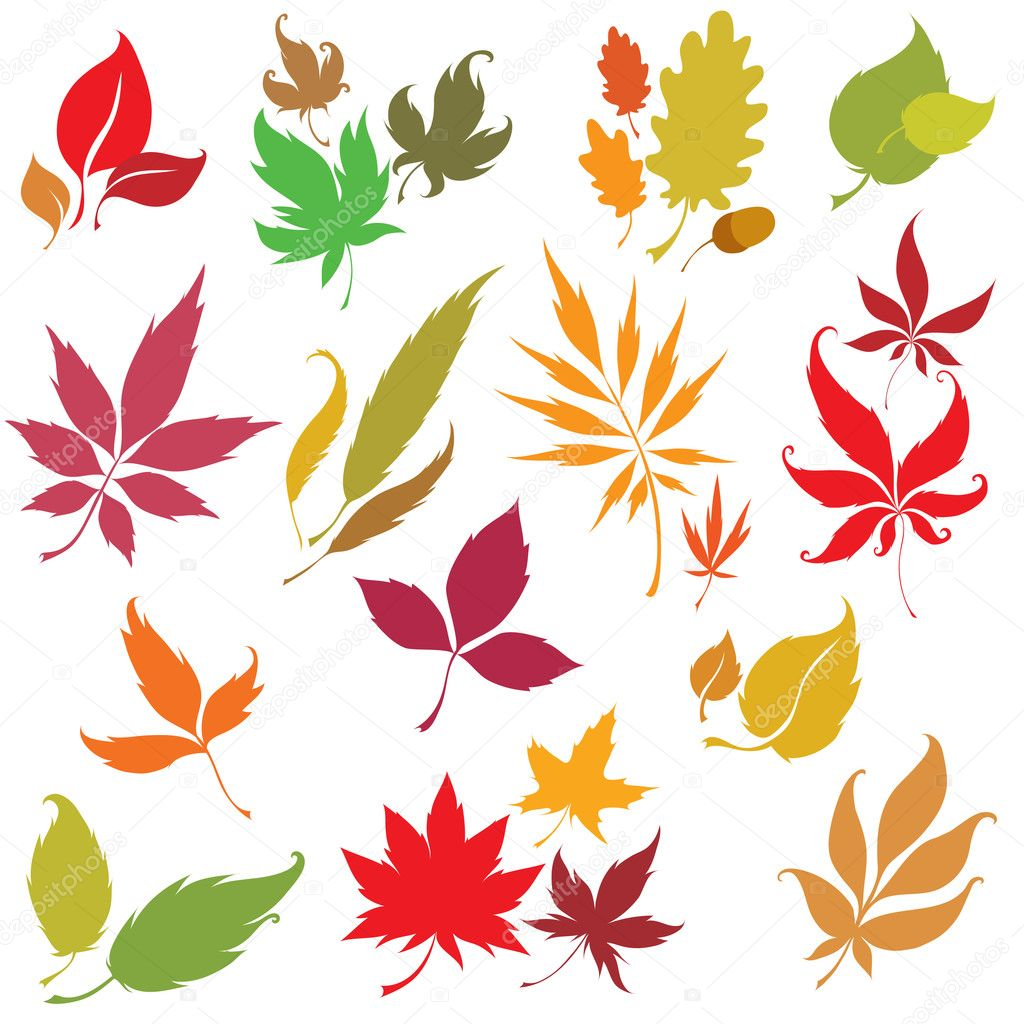 Set of vector colorful autumn leaves design elements. Thanksgiving  Stock Vector #1601250