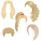 Hair styling for woman — Stock Vector