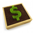 Growing dollar symbol - Stock Photo