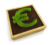 Growing euro symbol — Stock Photo