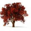3d autumnal tree - Stock Photo