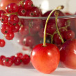 Red berries lay in a plate — Lizenzfreies Foto