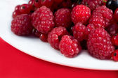 Red berries raspberries — Stock Photo