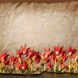 Old  Textured Floral Background — Stock Photo