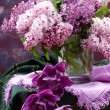 Bouquet of flowers Lilac — Stock Photo
