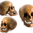 Ancient human skull in three dimensions — Stock Photo