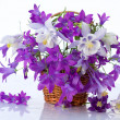 Bouquet of flowers bells — Stock Photo