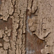 Old paint on wood — Stockfoto