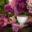 Still Life with flowers and tea — Stock Photo #2465995