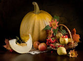 Still life with pumpkin — Stock Photo