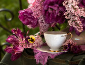 Still Life with flowers and tea — ストック写真