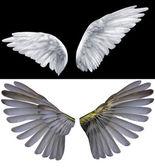 2 つの翼 — ストック写真