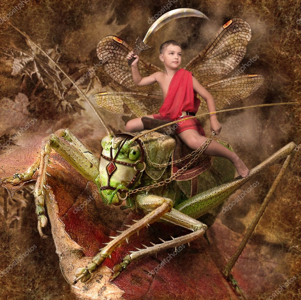 Boy warrior riding on grasshoppers — Stock Photo #2475911
